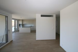 Neubau MFH Schmiedegasse Dornach